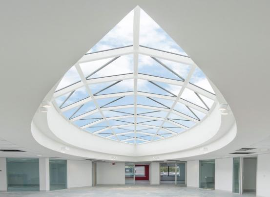 Gridshell Rooflights